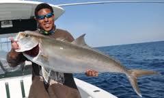 Itm blog itm international tool machines for Fishing report mexico beach fl